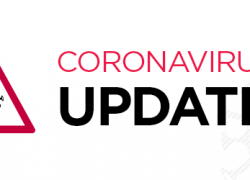 The latest UK Finance Coronavirus Business Interruption Loan Scheme Update