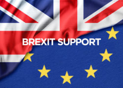 Government announces £20 million SME Brexit Support Fund